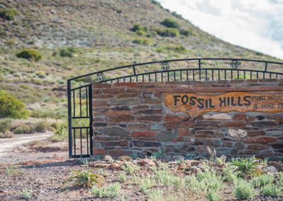 Fossil Hills-91 (Large)